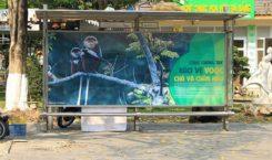 Sự khác biệt của các quảng cáo nhà chờ xe buýt tại Đà Nẵng